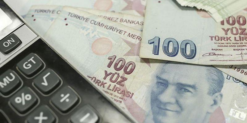 Devlet bankalarının desteğiyle yüzleri güldü