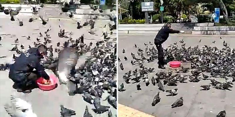 Polis, güvercinleri elleriyle besledi