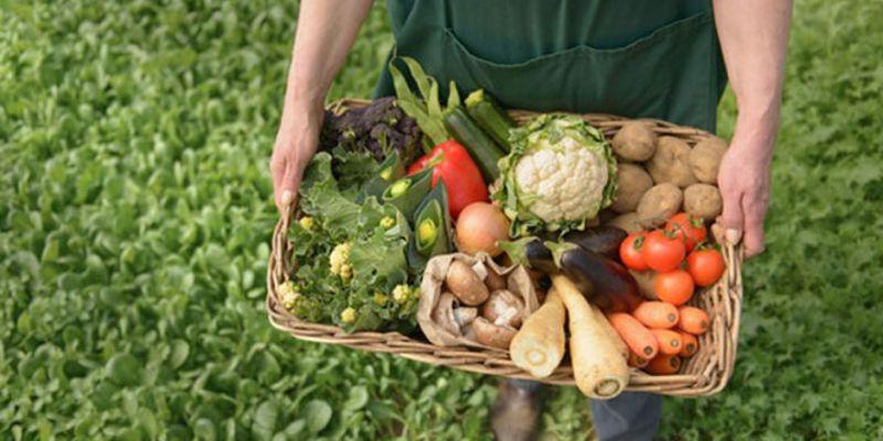 """Organik tarıma """"mücbir sebep"""" düzenlemesi"""