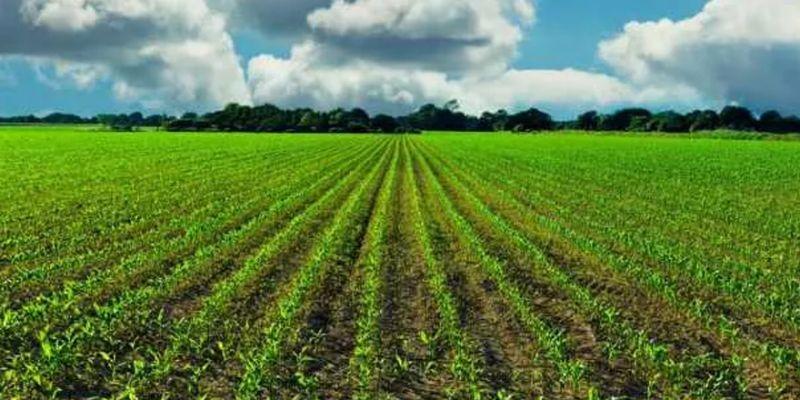 Dijital tarım pazarı uygulaması başladı