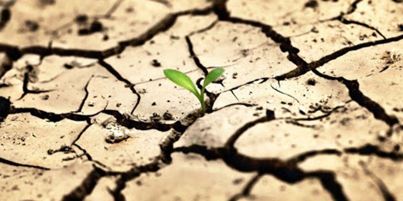 İnsanlık görülmemiş bir krizle karşı karşıya kalabilir