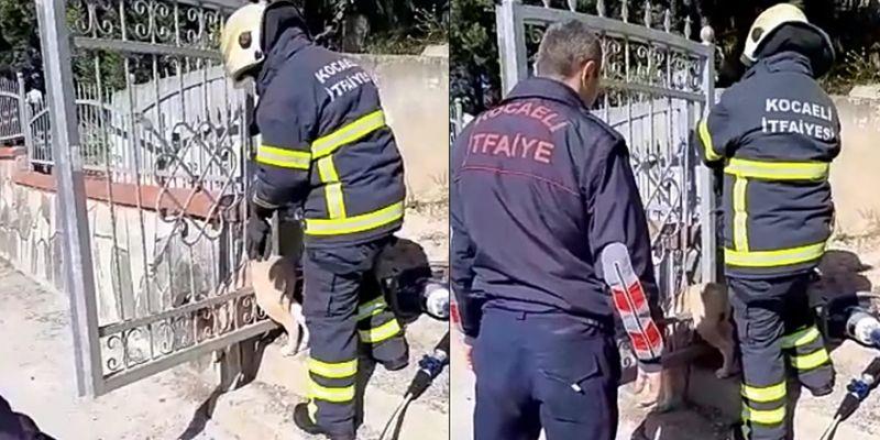 Mezarlık kapısına sıkışan köpeği itfaiye kurtardı