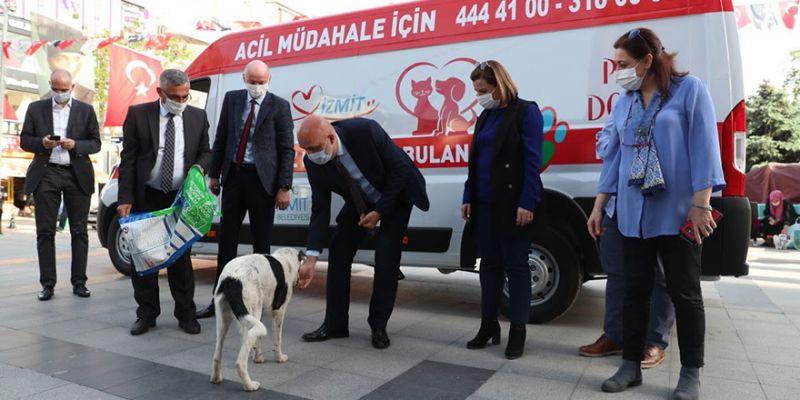 İzmit'te sokak hayvanlarının yadımına ambulans yetişecek