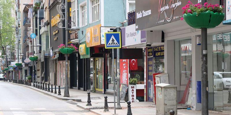 İnönü Caddesi sardunyalarla renklendi