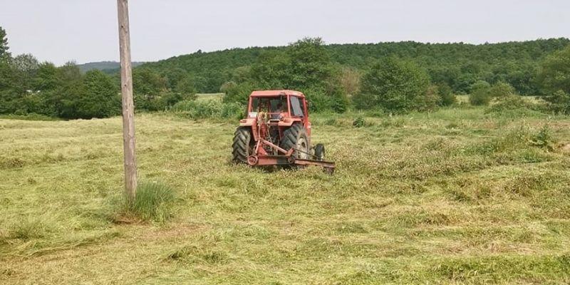 Tarımsal üretim Kovid-19 tedbirleri kapsamında sürüyor