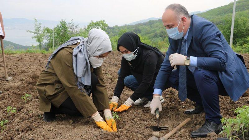 Ata tohumları toprakla buluştu