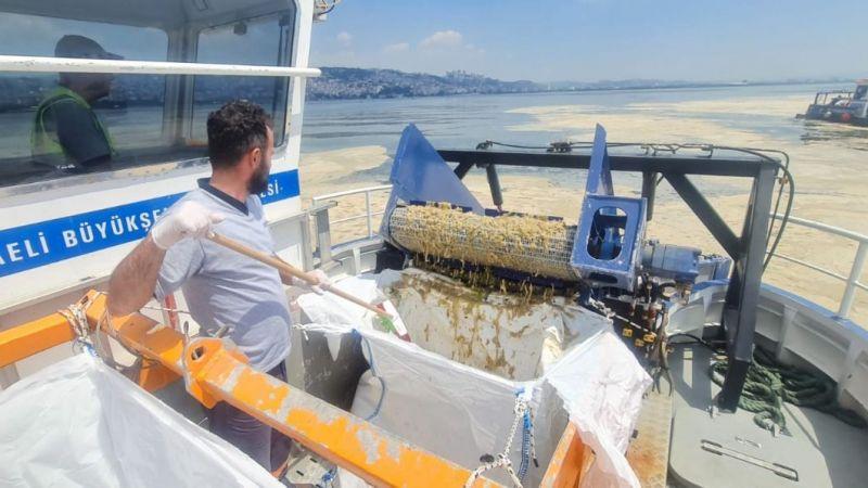 İzmit Körfezi'nden her gün 2,5 ton müsilaj toplanıyor