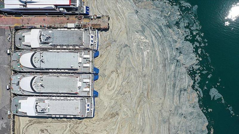 Marmara'daki müsilaj için yeni umut: Reaktif oksijen