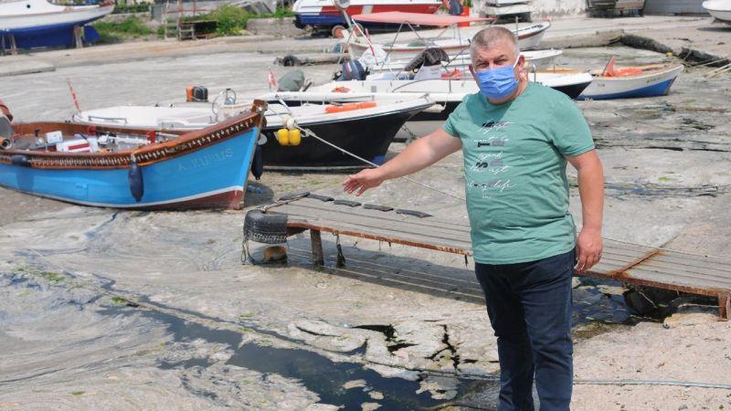 Körfezi kaplayan müsilaj, balık avının engeli