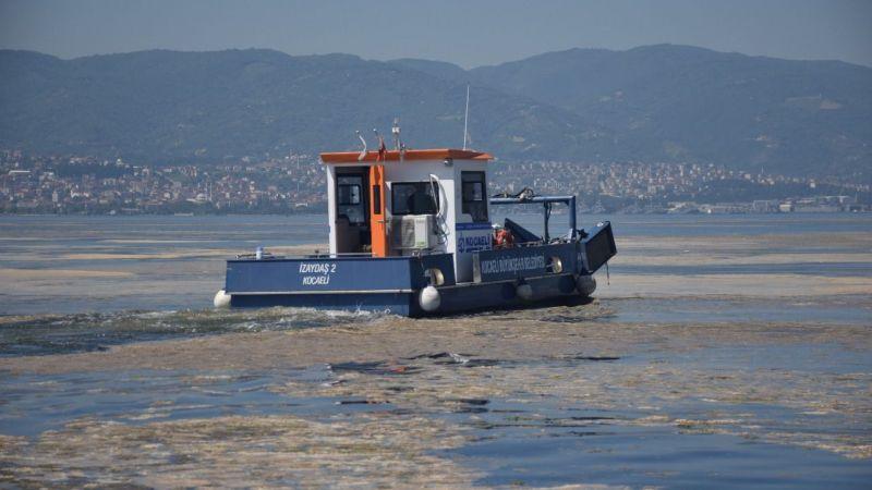 İzmit Körfezi'nde müsilaj temizleme çalışmaları devam ediyor
