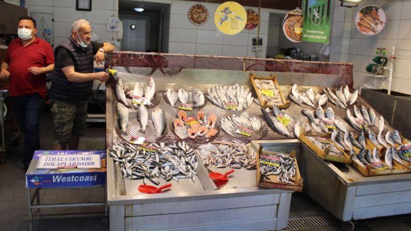 Balık pazarına gelenler, 'Marmara balığı mı?' diye soruyor