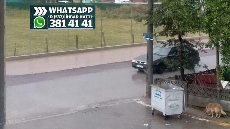 Her yağmurun ardından mini bir göle dönüşüyor