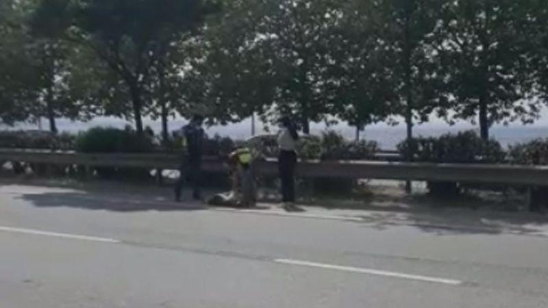 Yaralı köpeğin yardımına polis ekipleri koştu
