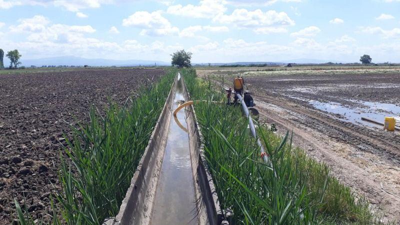 Kocaeli'de sulu tarımla ülke ekonomisine 10 milyon liralık katkı