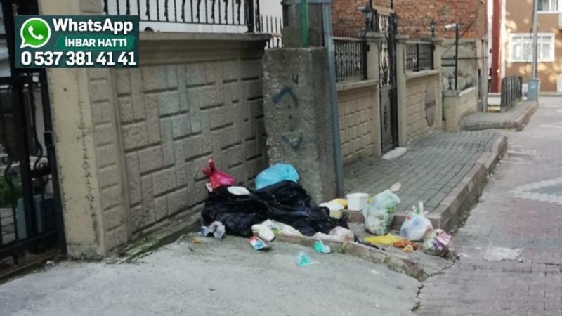 Çöpler sokağa atılıyordu, çöp konteyneri konuldu