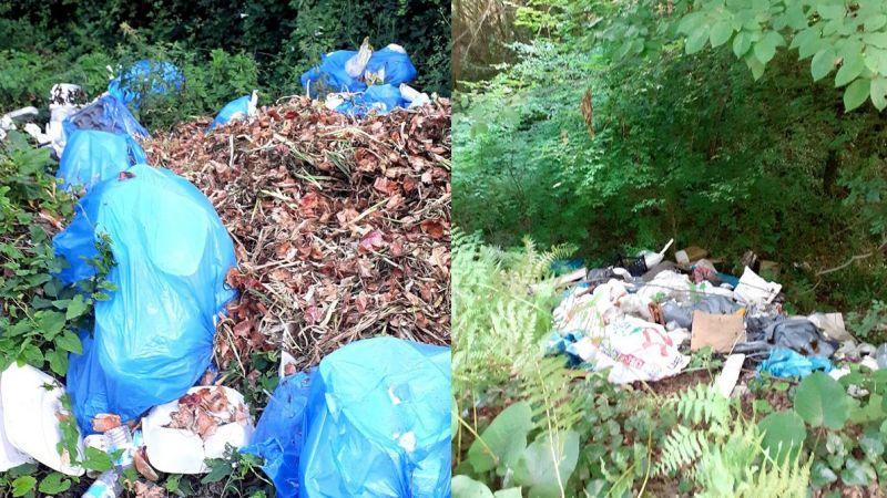 Ormanlık alana traktörle çöp döktüler