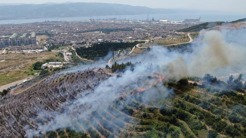 Kocaeli'de orman yangını! Alevler hızla yayıldı