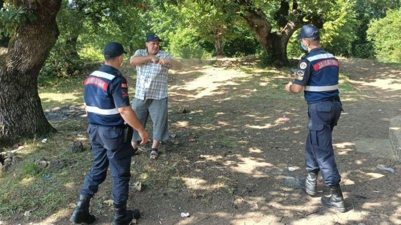 Kocaeli'de ekipler ormanları korumak için sahada