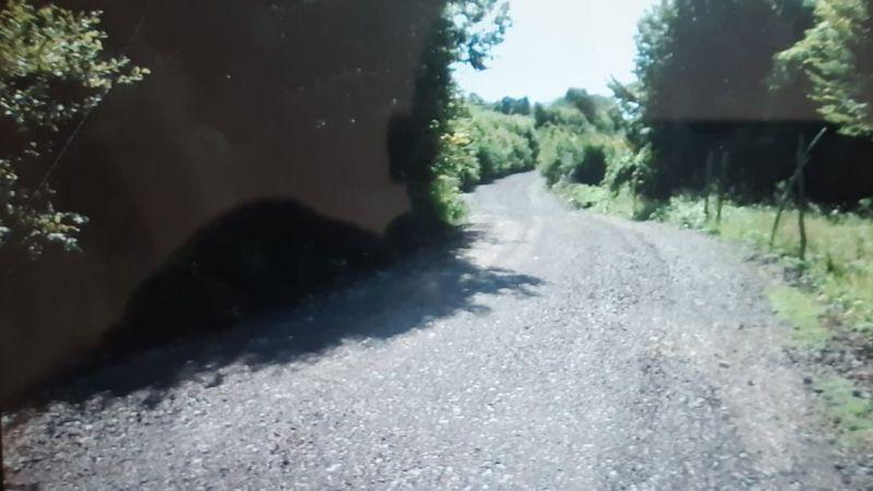 Arpalık köyü yolu düzeltildi