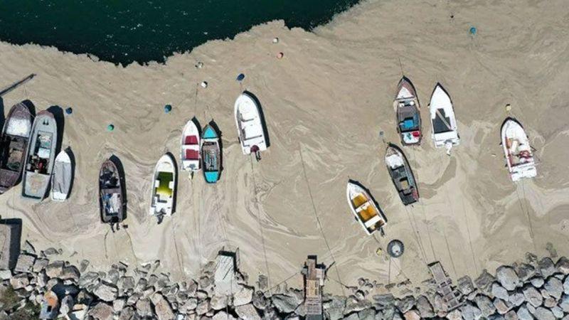 Marmara'da 'balıkçılık' tartışması: Av sezonu ertelenmeli mi?