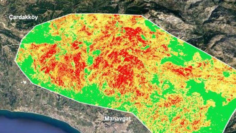 GTÜ orman yangınlarının etkili olduğu alanları haritalandırdı