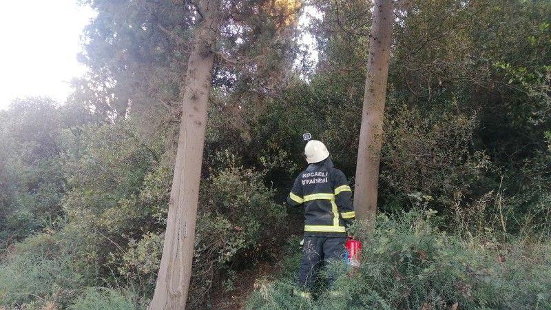 Ormanlık alanda yeniden çıkan yangını muhtar söndürdü