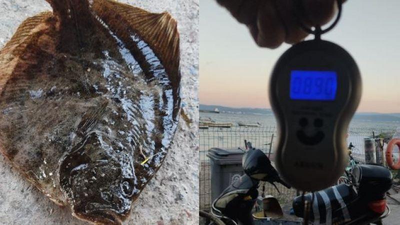 Marmara Denizi'nden güzel haber! 10 ayda 740 gram aldı