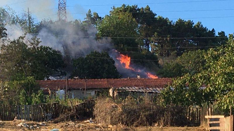 Orman tutuştu, yangını vatandaşlar söndürdü