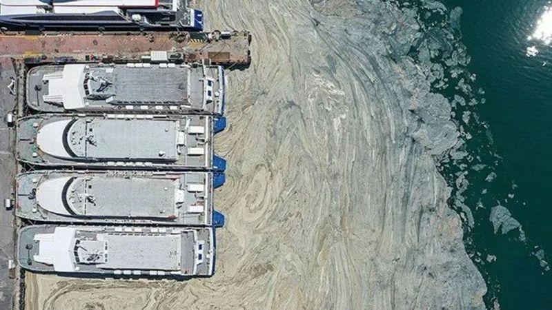 Marmara Denizi'nde 450 farklı noktada müsilaj incelemesi: Bu seneki manzarayı arayacağız