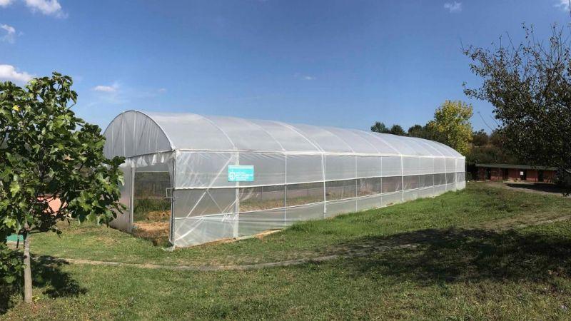 Özel bireyler, serada sebze yetiştirerek rehabilite ediliyor