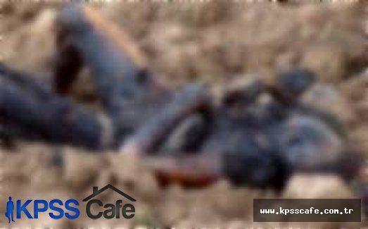 Kırşehir'de Yanmış ve Hayvanlar Tarafından Parçalanmış Ceset Bulundu