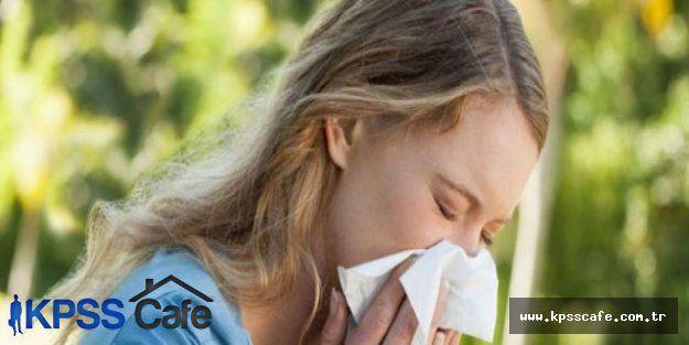 Baharda alerjiden nasıl korunulur?