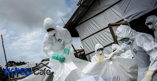 Ebola aşısının denemeleri başarılı