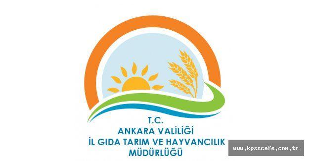 Ankara İl Gıda Tarım ve Hay. Müd. Engelli İşçi Alacak