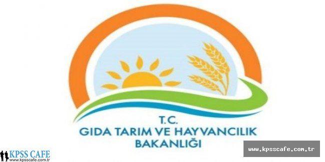 Gıda Tarım ve Hayvancılık Bakanlığı Geçici İşçi Alacak