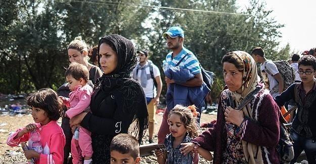 Sığınmacılar Sırbistan-Macaristan sınırında açlık grevine başladı