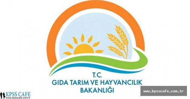 Gıda, Tarım ve Hayvancılık Bakanlığı uzman yardımcılığı yönetmeliğini değiştirdi