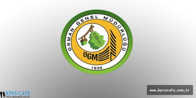 Orman Genel Müdürlüğü 36 Sözleşmeli Personel Alacak