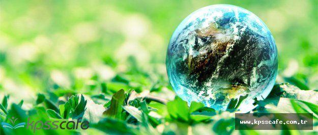 AB Bakanından Dünya Çevre Günü Açıklaması