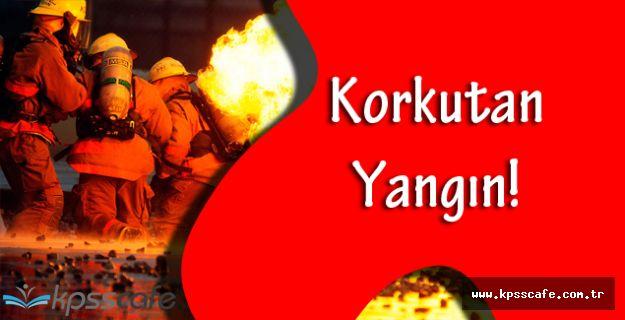 İzmir Karaburun'da Korkutan Yangın!