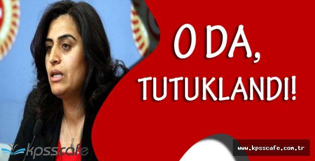DBP Eş Genel Başkanı Sebahat Tuncel, Tutuklandı!