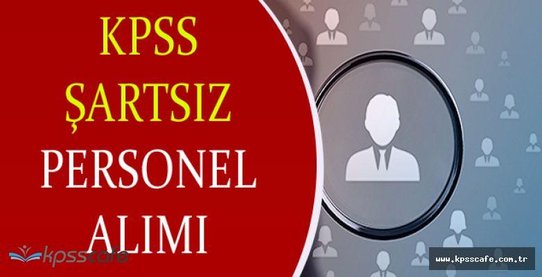 Göynük Belediyesi KPSS Şartsız İlköğretim Mezunu Personel Alımı Yapacak!
