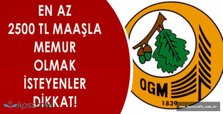 Orman Genel Müdürlüğü KPSS ile Mühendis Alımı Başvuruları Başladı:Başvuru Şartları Nelerdir?