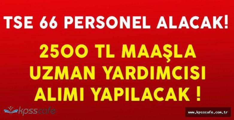 Türk Standartları Enstitüsü 66 Adet Personel Alımı Yapacak