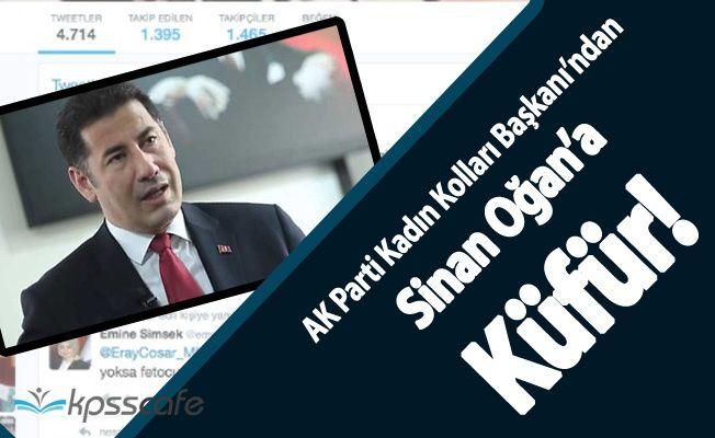 AK Parti Kadın Kolları Başkanından Sinan Oğan'a Küfür