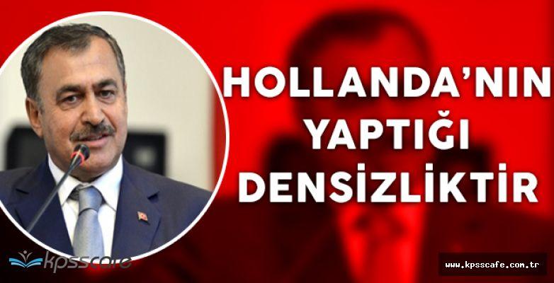 """Orman Bakanı: """"Hollanda'nın yaptığı densizlik"""""""