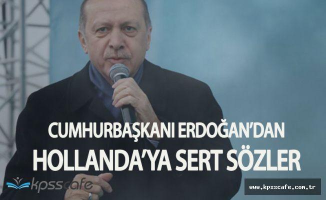 Cumhurbaşkanı Erdoğan'dan Hollanda Hükümetine Sert Sözler