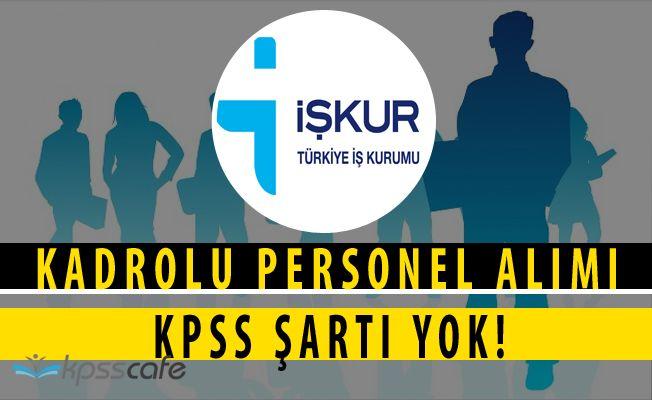Serenli Belediye Başkanlığı KPSS'siz Kadrolu Personel Alımları Yapıyor(İlköğretim-Önlisans-Lisans Mezuniyeti)