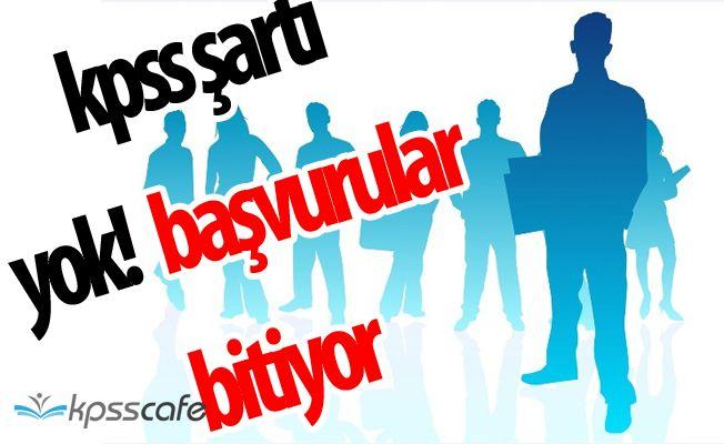 Tirebolu Belediyesi KPSS ŞARTSIZ Personel Alımı Bitiyor (En Az İlköğretim Mezunu)