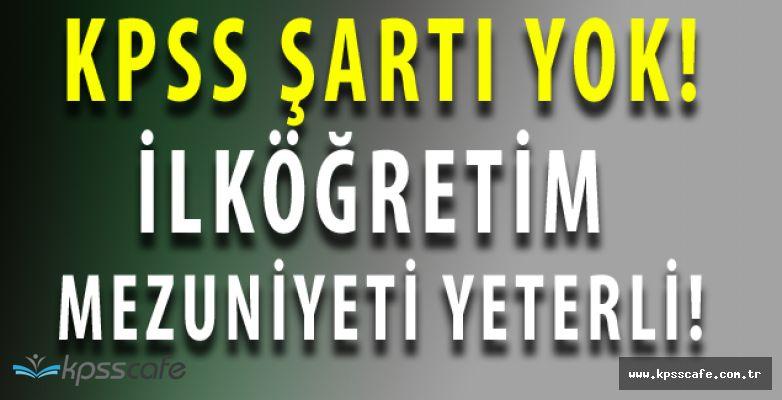 İnönü Belediyesi KPSS ŞARTSIZ Daimi İşçi Alımı Yapıyor (İlköğretim Mezuniyeti Şartı)